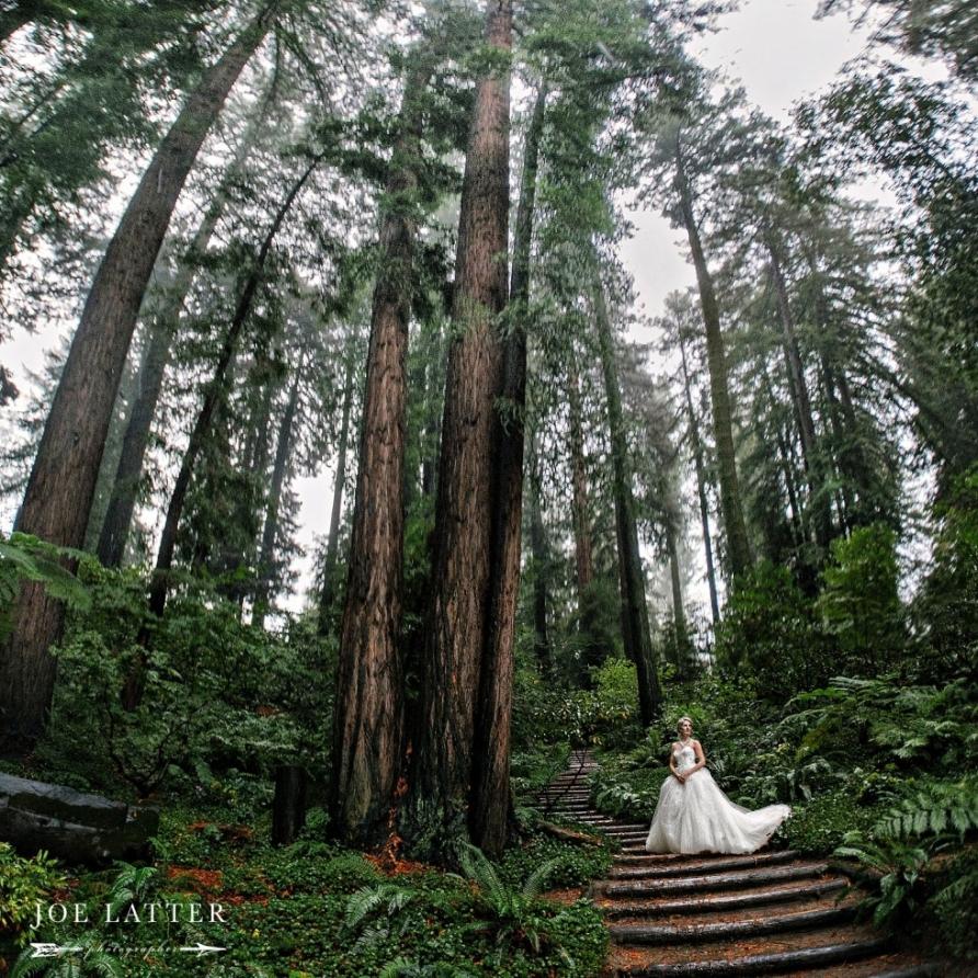 0034 Best Nestldown Wedding Photographer